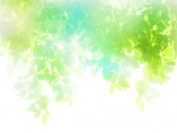 RRice-abstract-green-white-leaf